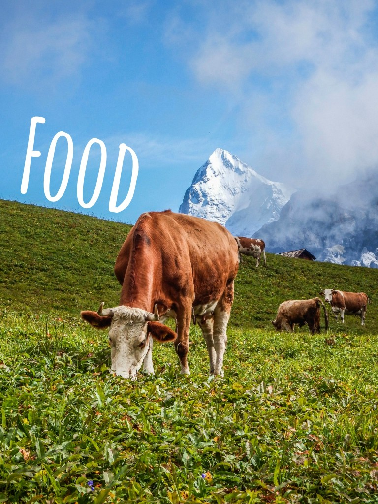 gimmelwald accommodations food