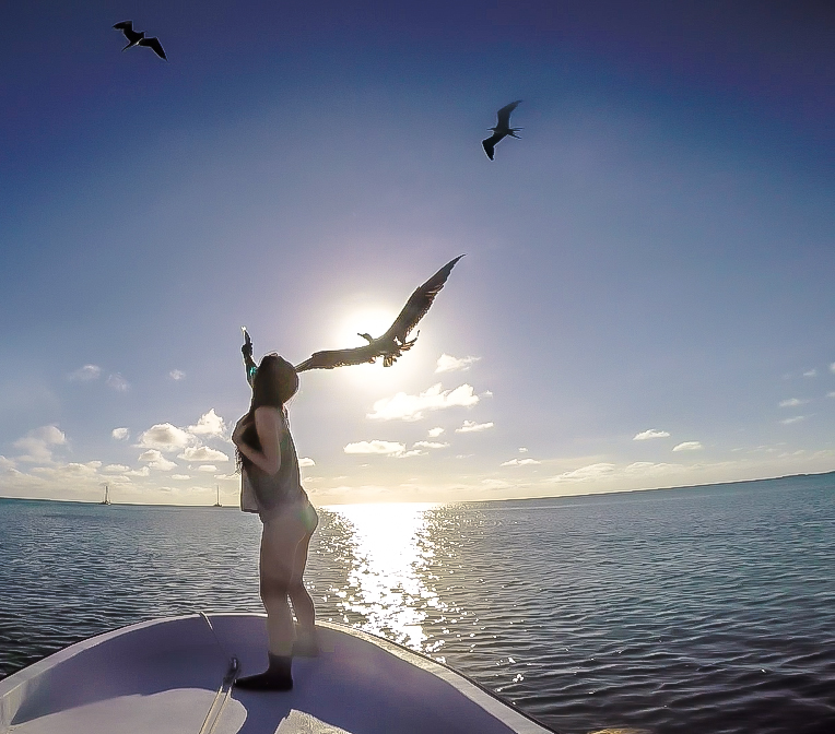 Feeding birds with Caveman Snorkeling Tours in Caye Caulker, Belize