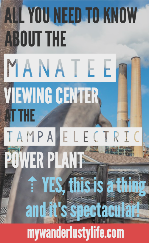 All you need to know about the Manatee Viewing Center at the Tampa Electric Company power plant. Yes, this is a thing!