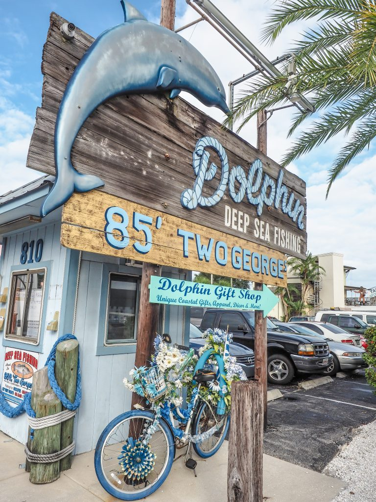 Dolphin cruise at the Sponge Docks in Tarpon Springs, Florida